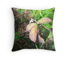 280 Throw Pillow