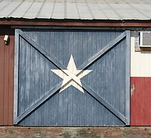 Lone Star by Cathy Jones