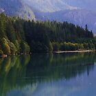 Mountain Lake Reflections by Patricia Shriver