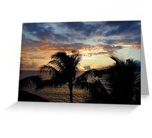 Sunset through the Palms Greeting Card