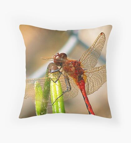 Sprock The Dragonfly Throw Pillow