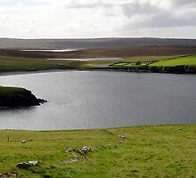 """UK: """"View to St. Olaf's Kirk"""", Shetland Islands by Kelly Sutherland"""