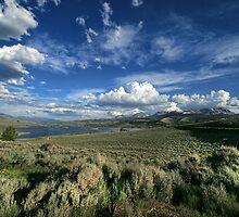 Colorado Land by Kimberly Palmer