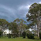 A Summer Storm by myraj