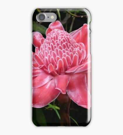 Red Torch Ginger Lily iPhone Case/Skin