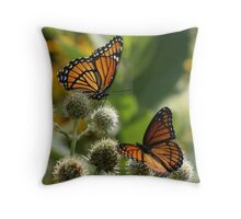 2 Viceroy Butterflies Throw Pillow