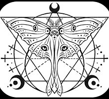 Luna Moth (2/2) by Kit Tyler Kazmier