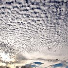 Clouds Fascinate Me by Wendy  Slee