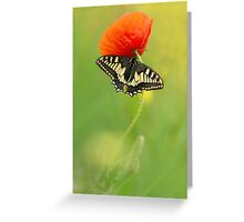 Impression with butterfly and red poppy Greeting Card