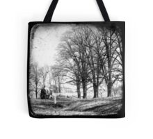 Gostwyck, Northern Tablelands, New South Wales, Australia Tote Bag