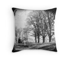 Gostwyck, Northern Tablelands, New South Wales, Australia Throw Pillow