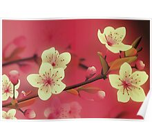 Yoshie blossom pink Poster
