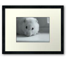Finny Framed Print