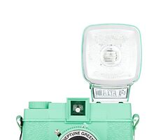 Neptune Green Vintage Camera by Jay's Designs