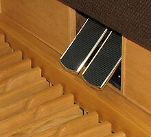 The Organ Pedals by kathrynsgallery