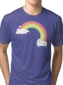 Rainbow Mistake Tri-blend T-Shirt