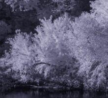 Infrared Pond Sticker