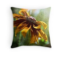 Face the Light Throw Pillow