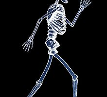 Handdrawn Skeleton X-Ray by Rob Davies