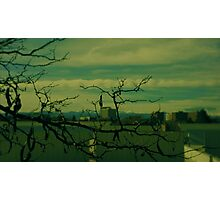 Wooded City  Photographic Print