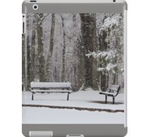 Snowy Benches iPad Case/Skin