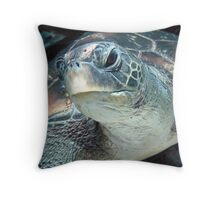 Green Turtle Eye Throw Pillow