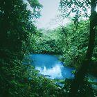 The Blue Lagoon in Río Celeste, Costa Rica by Guy Tschiderer
