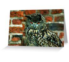 Eagle Owl -2 Greeting Card