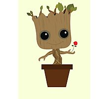 Groot with Rose Photographic Print