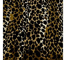 Animal Print Cheetah Black and Brown Photographic Print