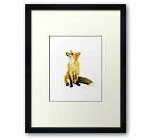 Fluffy  Fox Framed Print