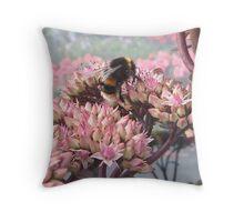 Sedum with Bee Throw Pillow
