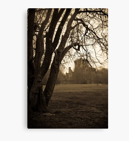 irish castle Canvas Print