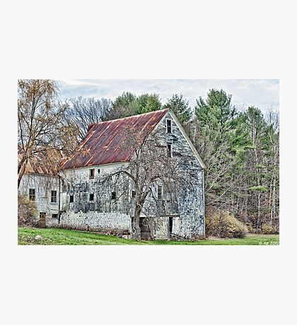 Rural Maine Delight Photographic Print