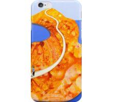 The Seeker iPhone Case/Skin