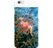 Dragons of the Sea. iPhone Case/Skin