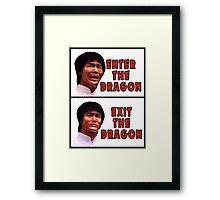 Enter the Dragons Framed Print
