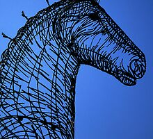 Heavy  Horse Blue by David Hutcheson