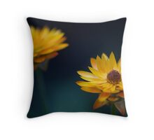What Has Come Between Us? Throw Pillow