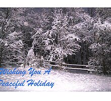 Wishing You A Peaceful Holiday by jansnow