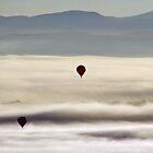 Rising Through the Morning Fog. by tdeuel98