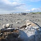 Hokitika Beach. by mistresskelly