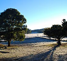 Frosty Goulburn Morning by Peta Jade