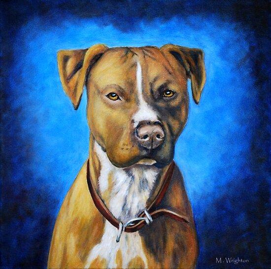 'Angel in Blue' - American Staffordshire Terrier by thatdogshop