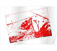 Birds on Red Poster