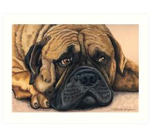 Waiting - Bullmastiff Art Print