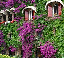 Ligurian coast by William Mason
