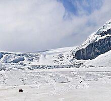 Athabasca Glacier.2 by Alex Preiss