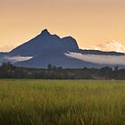 Mount Warning by Melissa Belanic