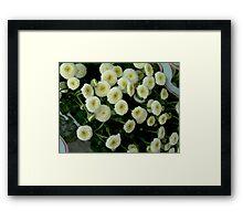 White Little Flowers  Framed Print